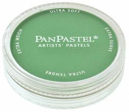 PanPastel Permanent Green