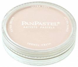 PanPastel Raw Umber Tint