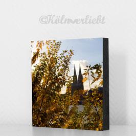 Köln im Herbst - reduziert