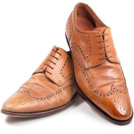 BASIC Schuhpflege