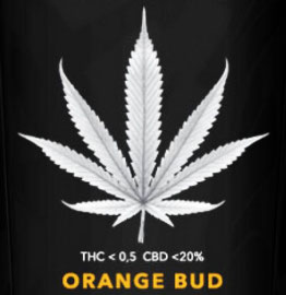 ORANGE BUD - Weedpassion