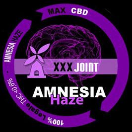 AMNESIA HAZE - XXXJoint