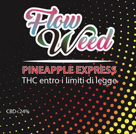 PINEAPPLE EXPRESS - Flow Weed