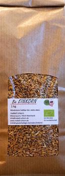 Bio Einkorn Korn