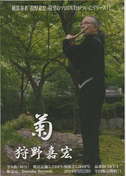 DVD 「菊」