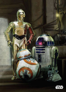 Poster Metal Star Wars Episodio VII Droids (10x14cm)