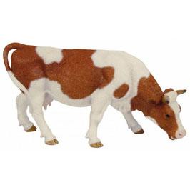 Vaca Simmental - Pastando