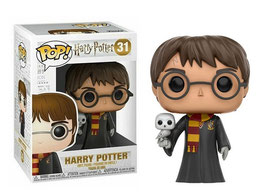 Harry Potter con Hedwig