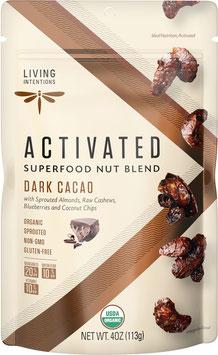 Aktivierte Bio Superfood Nussmischung Dark Cacao