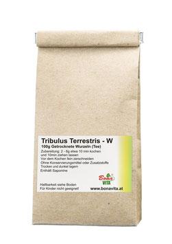 Tribulus Terrestris- Wurzeln