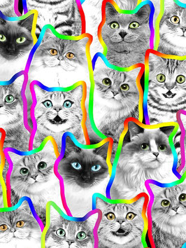 Timeless Treasures - Pounce Neon Outline Black and White Cats - Katzenstoff - Patchworkstoff