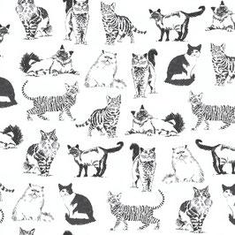 Timeless Treasure - Sketched Realistic Cats -  Schwarze Katzen auf weißem Grund