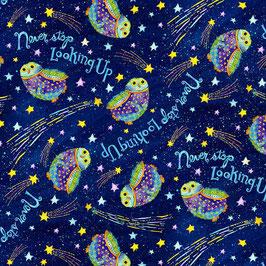 Henry Glass Fabrics - Debi Hron - Stay Wild Moon Child - Eulen und kleine Kometen auf Dunkelblau - Patchworkstoff