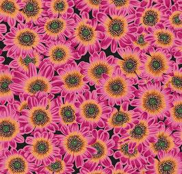 Free Spirit Fabrics - Philip Jacobs - Kaffe Fassett Collective August 2021 - Lucy - magentafarbene Sonnenblumen auf lila Hintergrund - Patchworkstoff