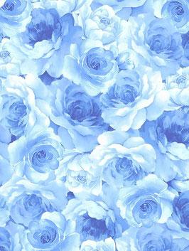 Stoff Timeless Treasures - Blüten - Bluebird Pinwheels with Attitude - White