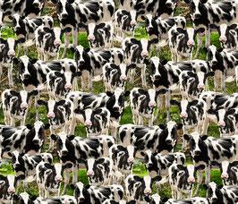 Timeless Treasures Kühe Schwarz-Weiß auf der Wiese