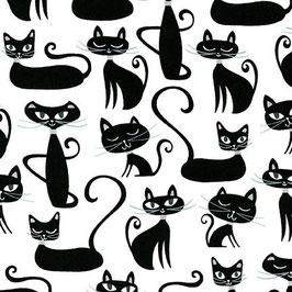 Robert Kaufman - Katzen in Schwarz auf weißem Grund - Whiskers & Tails - Patchworkstoff