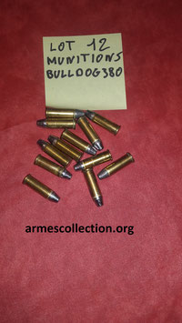 Lot de 12 munitions 380 BULLDOG rechargeables.