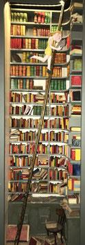 La bibliothèque de Sophie