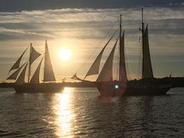 Abendsegeltörn zur Hanse Sail Samstag 07.08.2021