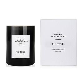 URBAN APOTHECARY   LUXURY CANDLE FIG TREE   DUFTKERZE