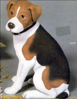 Hund Pinto