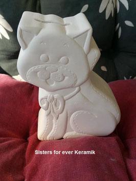 Katzenspardose Barney