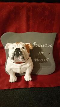 Schild mit Bulldogge