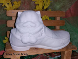 Perserkatze im Schuh