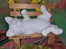 Katze Bubu auf Rücken liegend tatzend