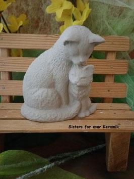 Katzenmutter Cecile mit Jungem Kessy