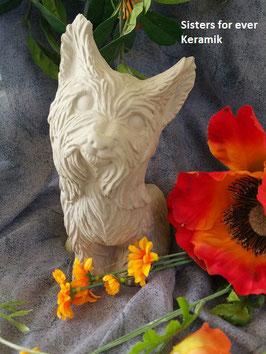 Yorkshire Terrier Taira (0039)