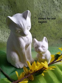 Katzenmama Alice mit Katzenkind Mao
