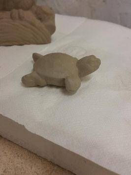 kleine Wasserschildkröte Swimmfoot