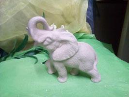 Elefant Toröööö