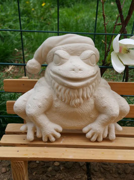 Frosch Zipfi