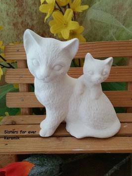 Katze Alice mit Jungem