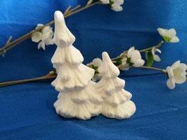 Tannenbaum für Polarbase