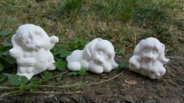 Drei kleine Hunde Susi, Mietzi und Stritzi im Set