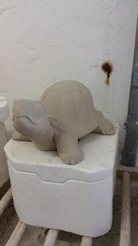 Schildkröte Goliath