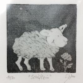 """Radierung """"Schäflein"""" 17/30"""