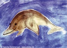 "Postkarte Delphin ""Charlie"""