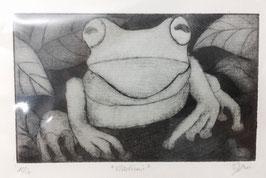 """Radierung Frosch """"Vladimir"""" 12/20"""