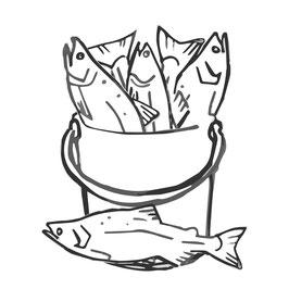 Sportfischer - 12 Lieferungen NORWYK-Rauchlachs