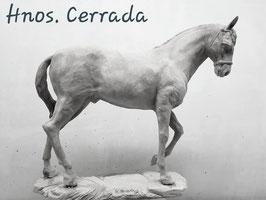 Ref.:2829 Caballo