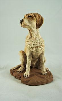 Ref.:3503 Perro Sentado