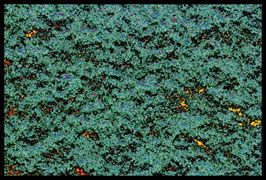 Leinwandbild, unglatt, Motiv: 1324b, in einem Massivholzrahmen
