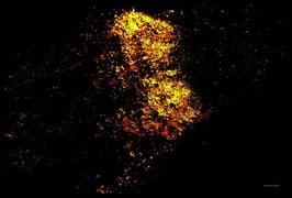 Leinwandbild, Sternenstaub, Motiv: 9543 in einem Rahmen mit Schattenfuge