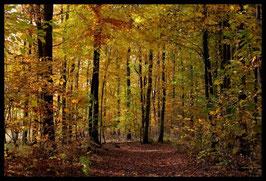Leinwandbild, aus Wald und Flur, Motiv: 0522, in einem Rahmen mit Schattenfuge