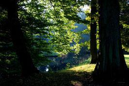 Leinwandbild, aus Wald und Flur, Motiv: 0015, auf einen Trägerrahmen gespannt